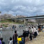 桂川マス釣り大会に参加しました